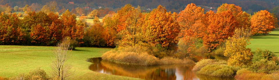 Autumnal_panorama